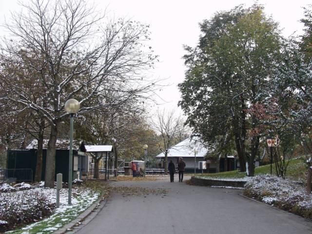 Japanischer Garten München westpark in münchen herbst winter